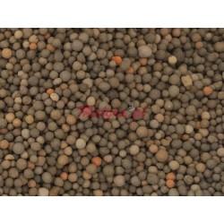 Bioceramika kulki 2-3mm